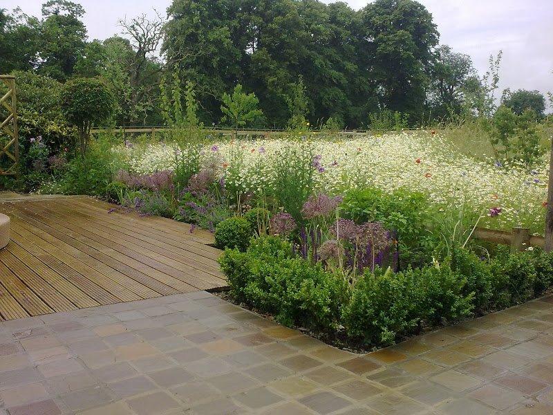 DMW Landscapes Contemporary Garden Meadow 13