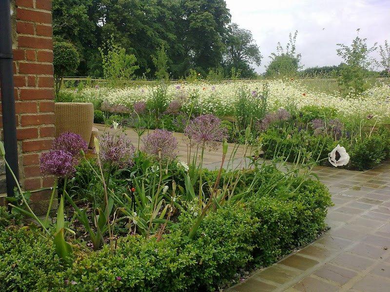 DMW Landscapes Contemporary Garden Meadow 15