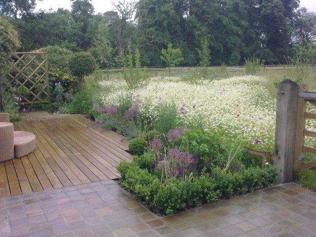 DMW Landscapes Contemporary Garden Meadow 24