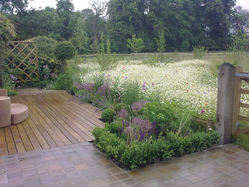 Contemporary Garden & Meadow
