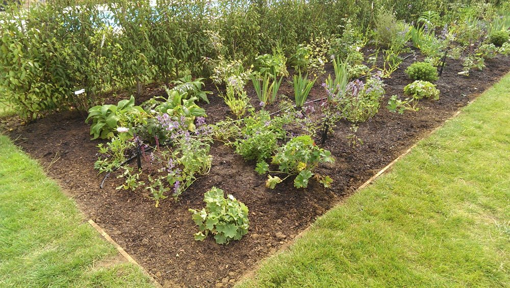 DMW Landscapes Local Garden Maintenance Service Oxfordshire 1