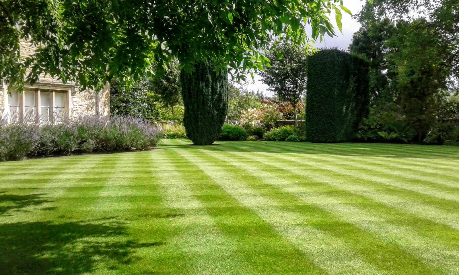 Garden Lawn Maintenance