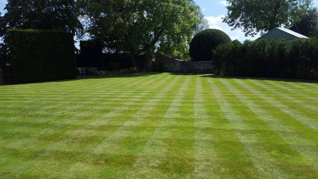 DMW Landscapes Local Garden Maintenance Service Oxfordshire 75