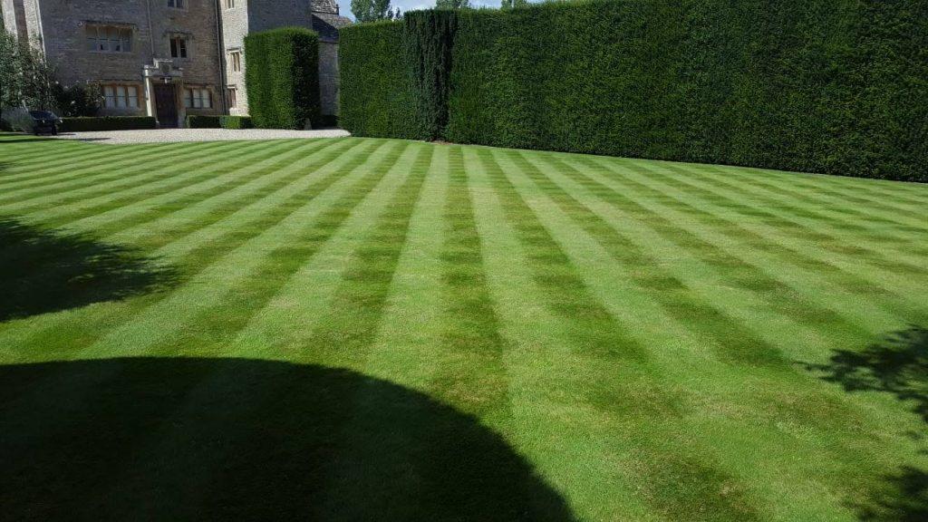 DMW Landscapes Local Garden Maintenance Service Oxfordshire 78