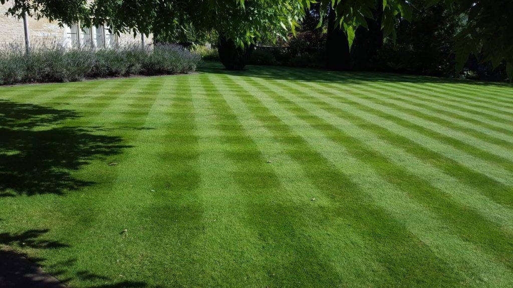 DMW Landscapes Local Garden Maintenance Service Oxfordshire 79