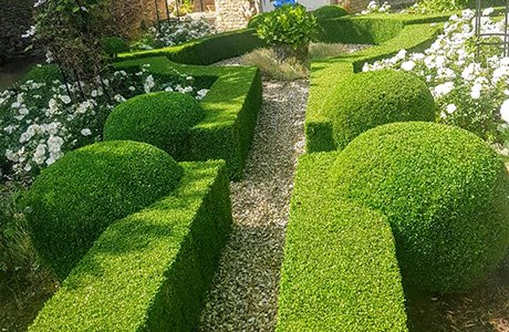 DMW Landscapes Local Landscaping Services 27